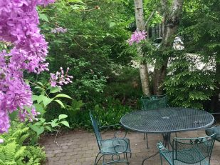 table and chairs on brick patio with flowering shrubs